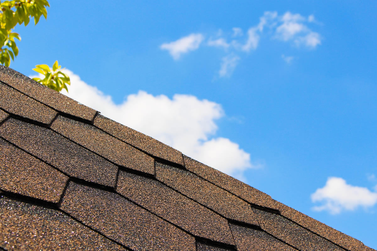 Use Twelve Oaks Roofing For Roof Repairs In West