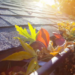 Most Common Roof Problems in West Bloomfield Michigan