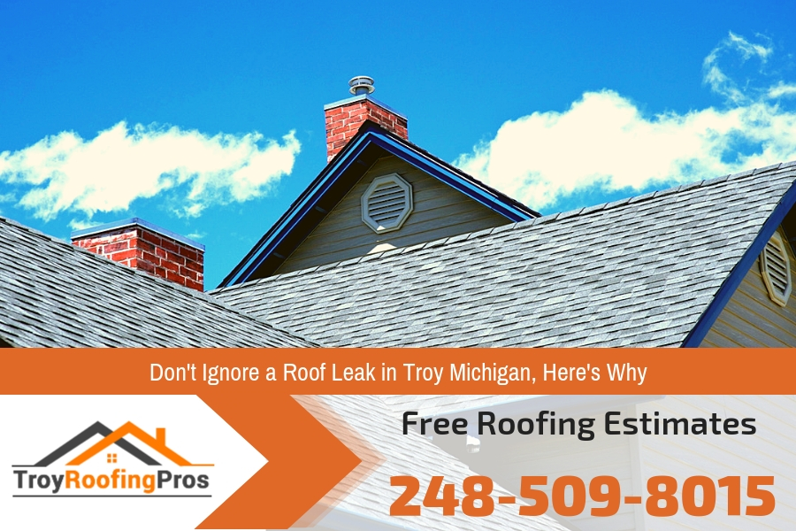 Dont Ignore a Roof Leak in Troy Michigan Heres Why