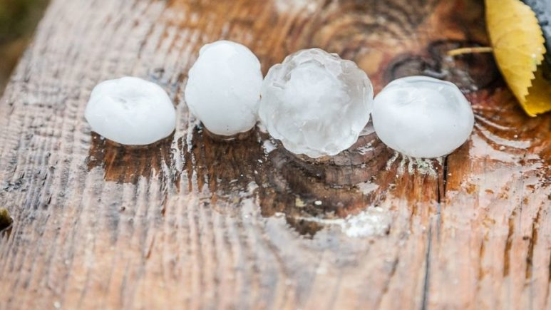 Signs Your Roofing in Downriver Michigan Has Hail Damage
