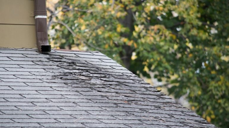Does Your Home Have Dark Streaks on the Roofing in Downriver Michigan? Here's Why