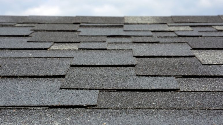 Are Impact- Resistant Shingles in Plymouth Michigan Worth It?