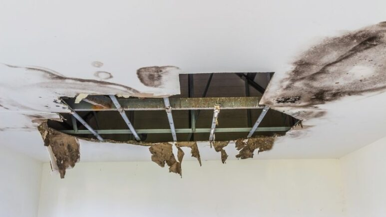 How to Spot a Leaking Roof in Brownstown Michigan