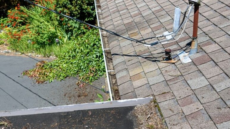 Top 4 Things That Are Damaging Your Roof in Ann Arbor Michigan
