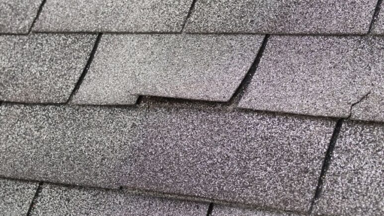 4 Reasons Your Roof Shingles in Downriver Michigan May Be Failing
